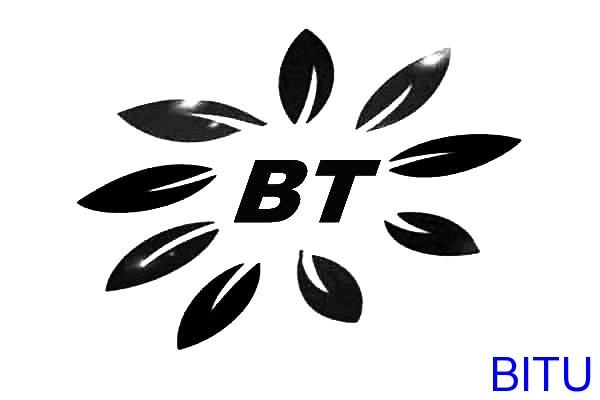 碧涂(BITU)反渗透膜清洗剂标志